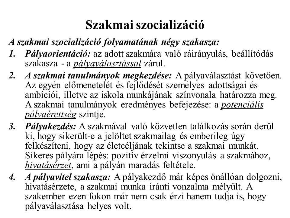 Szakmai szocializáció