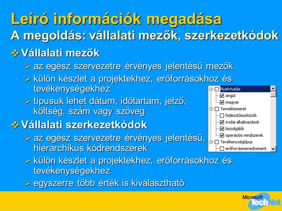 Leíró információk megadása A megoldás: vállalati mezők, szerkezetkódok