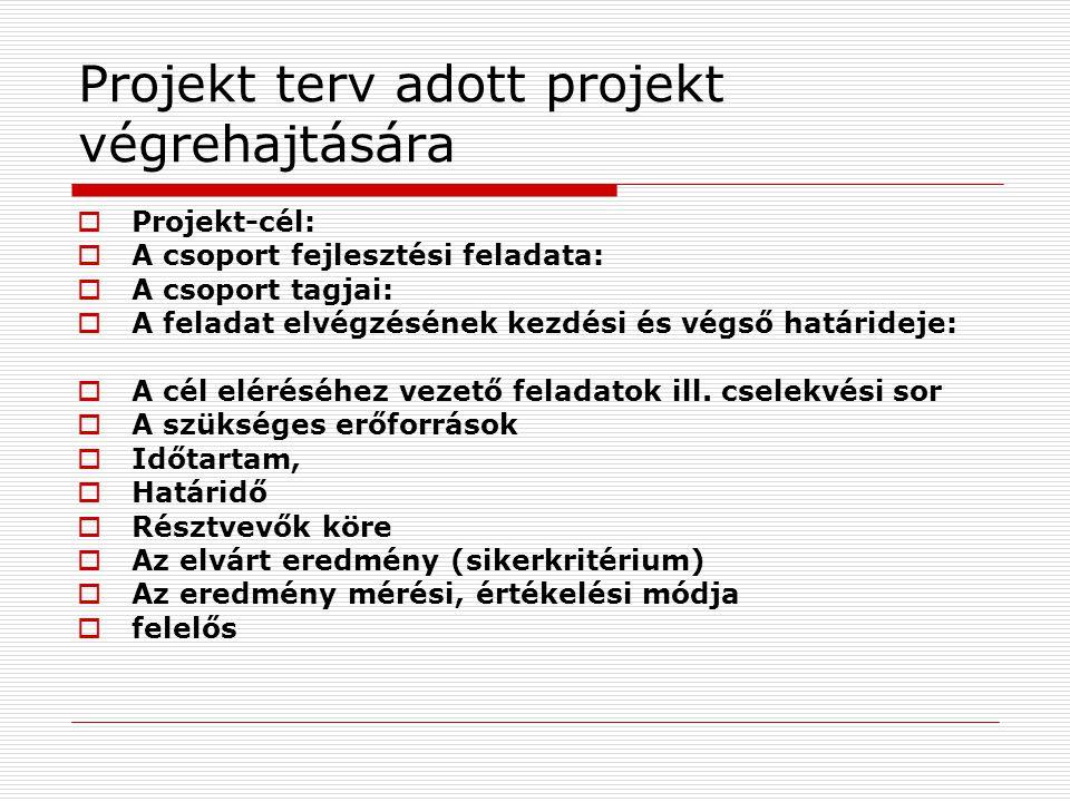 Projekt terv adott projekt végrehajtására