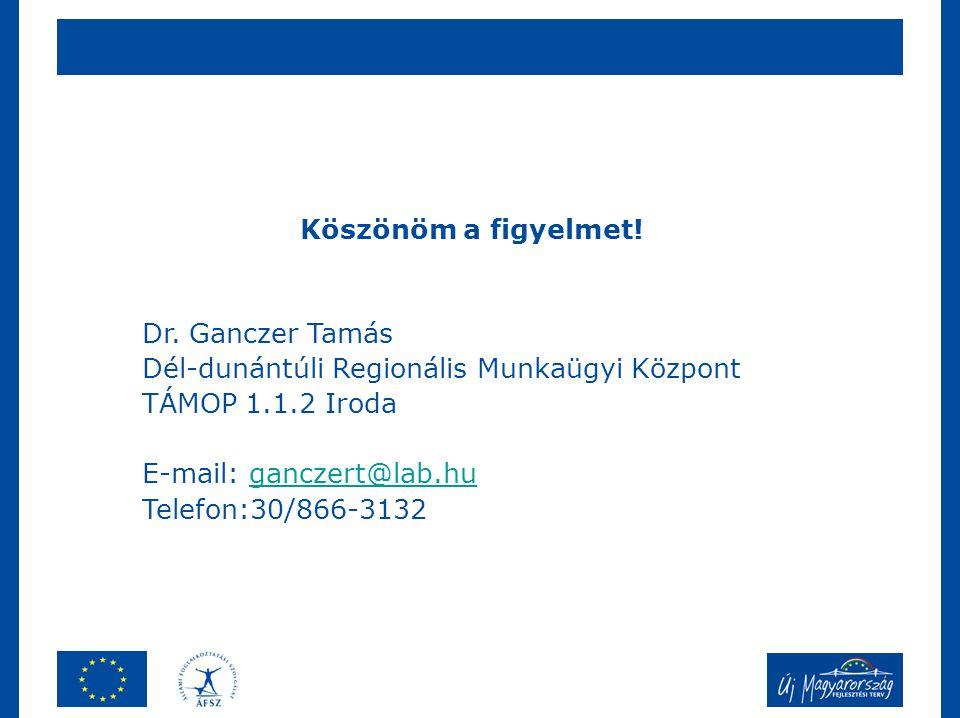 Köszönöm a figyelmet! Dr. Ganczer Tamás. Dél-dunántúli Regionális Munkaügyi Központ. TÁMOP 1.1.2 Iroda.