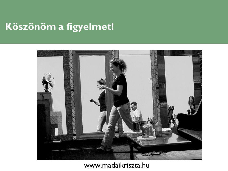 Köszönöm a figyelmet! www.madaikriszta.hu