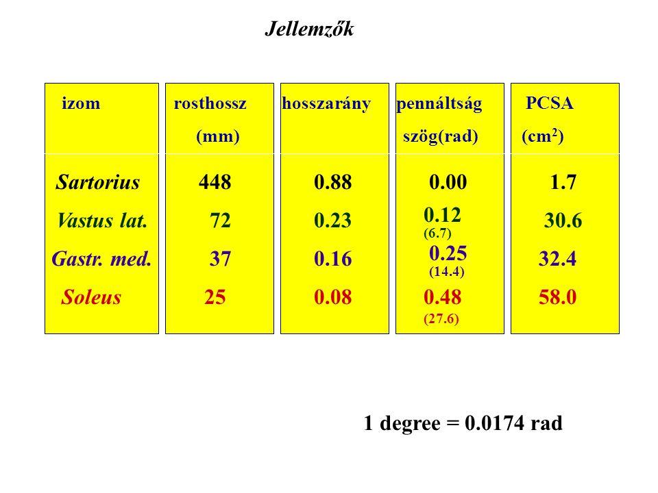 Jellemzők Sartorius 448 0.88 0.00 1.7 Vastus lat. 72 0.23 0.12 (6.7)