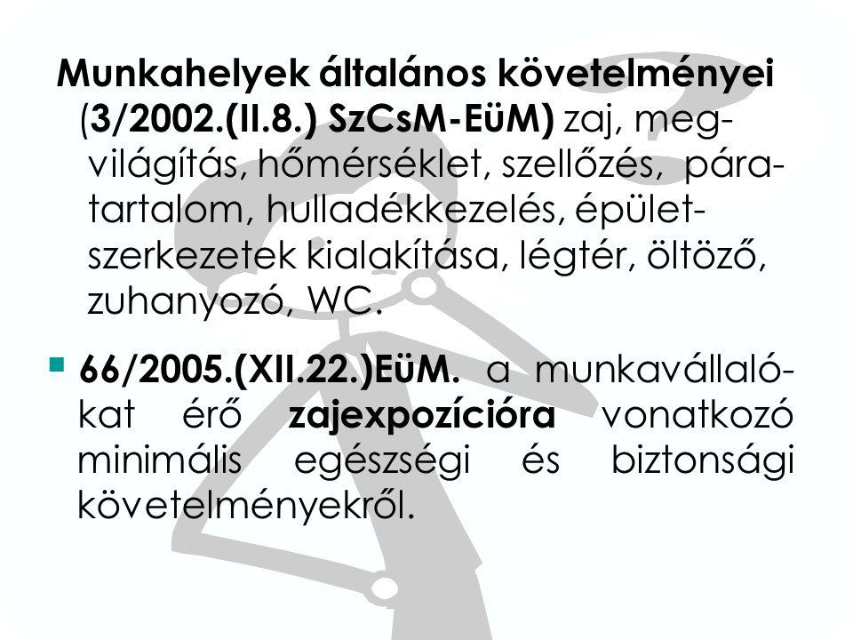 Munkahelyek általános követelményei (3/2002. (II. 8