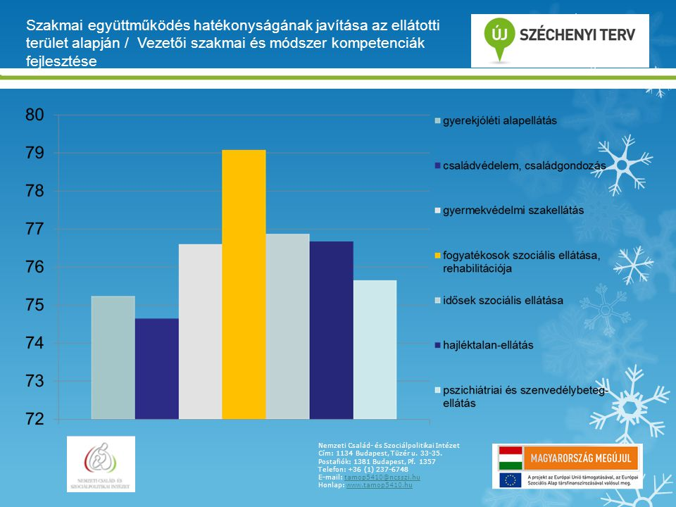 Szakmai együttműködés hatékonyságának javítása az ellátotti terület alapján / Vezetői szakmai és módszer kompetenciák fejlesztése