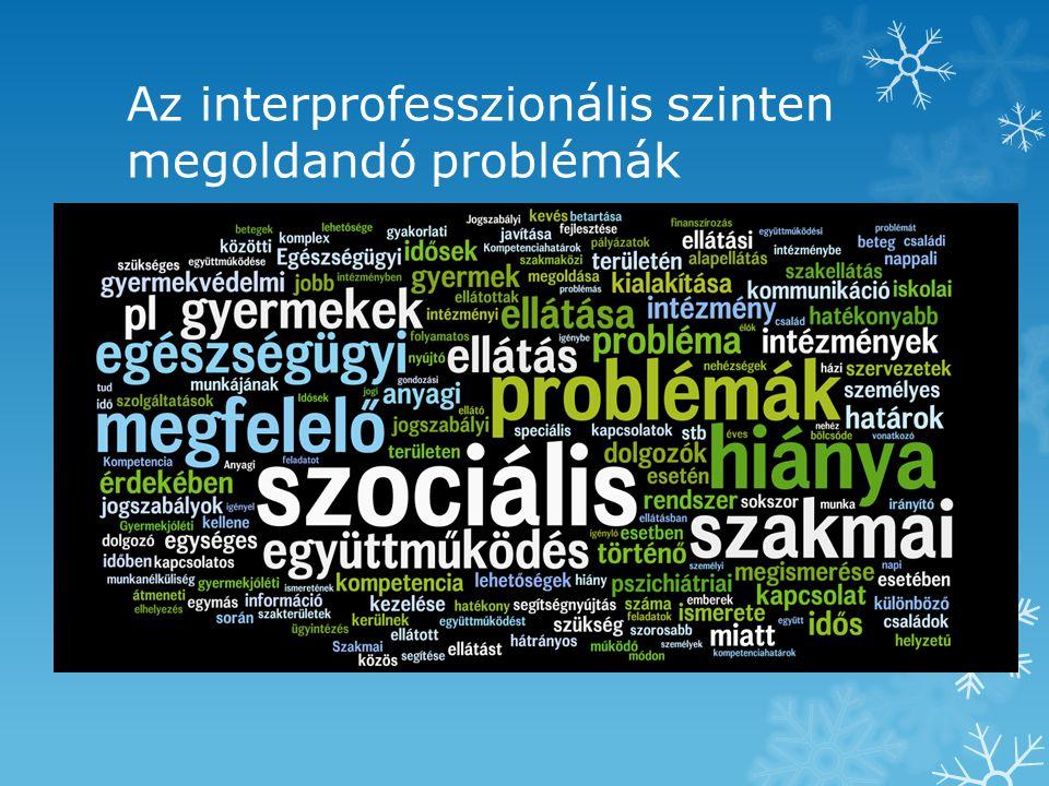 Az interprofesszionális szinten megoldandó problémák