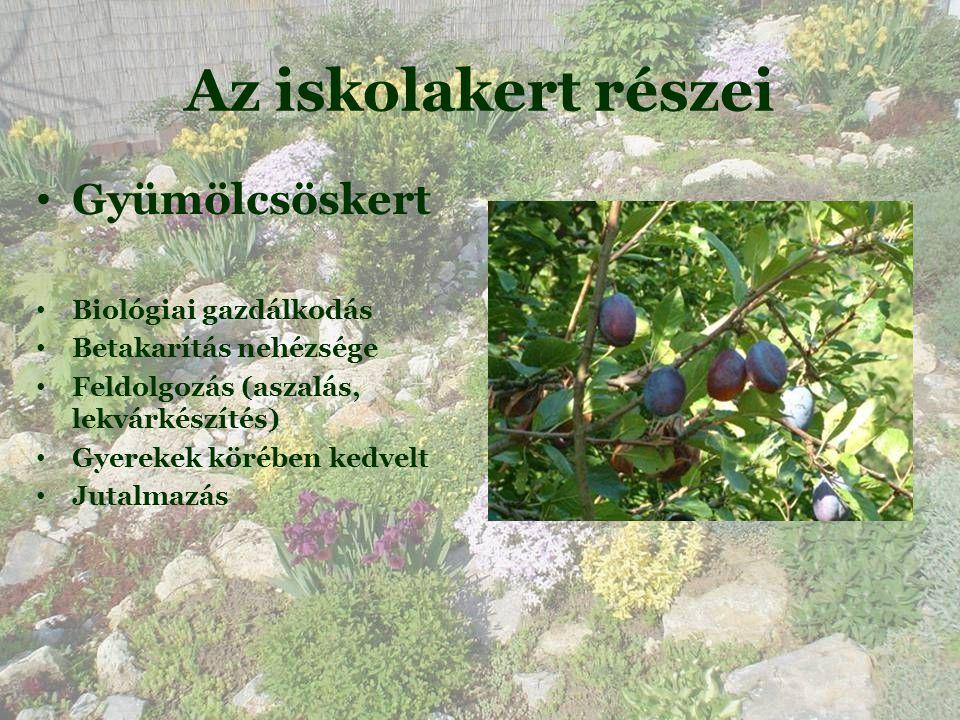 Az iskolakert részei Gyümölcsöskert Biológiai gazdálkodás