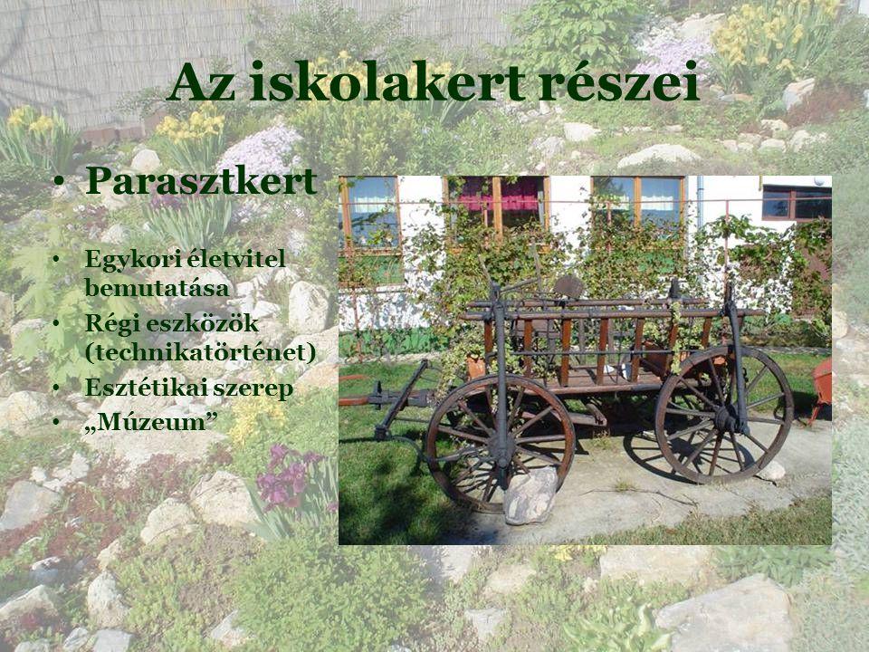 Az iskolakert részei Parasztkert Egykori életvitel bemutatása