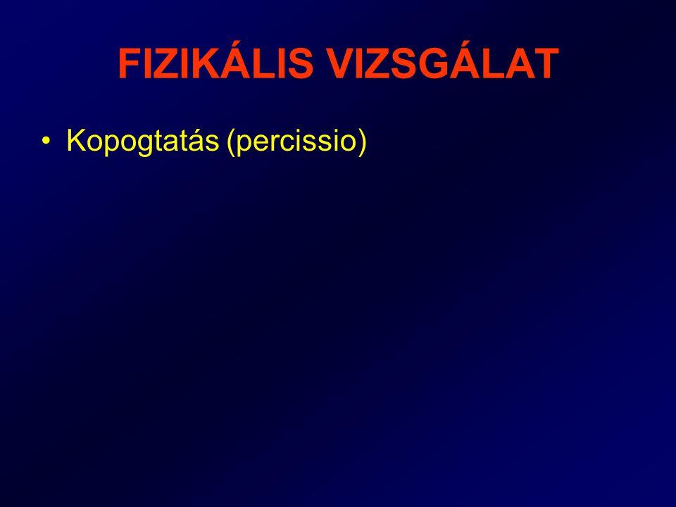 FIZIKÁLIS VIZSGÁLAT Kopogtatás (percissio)