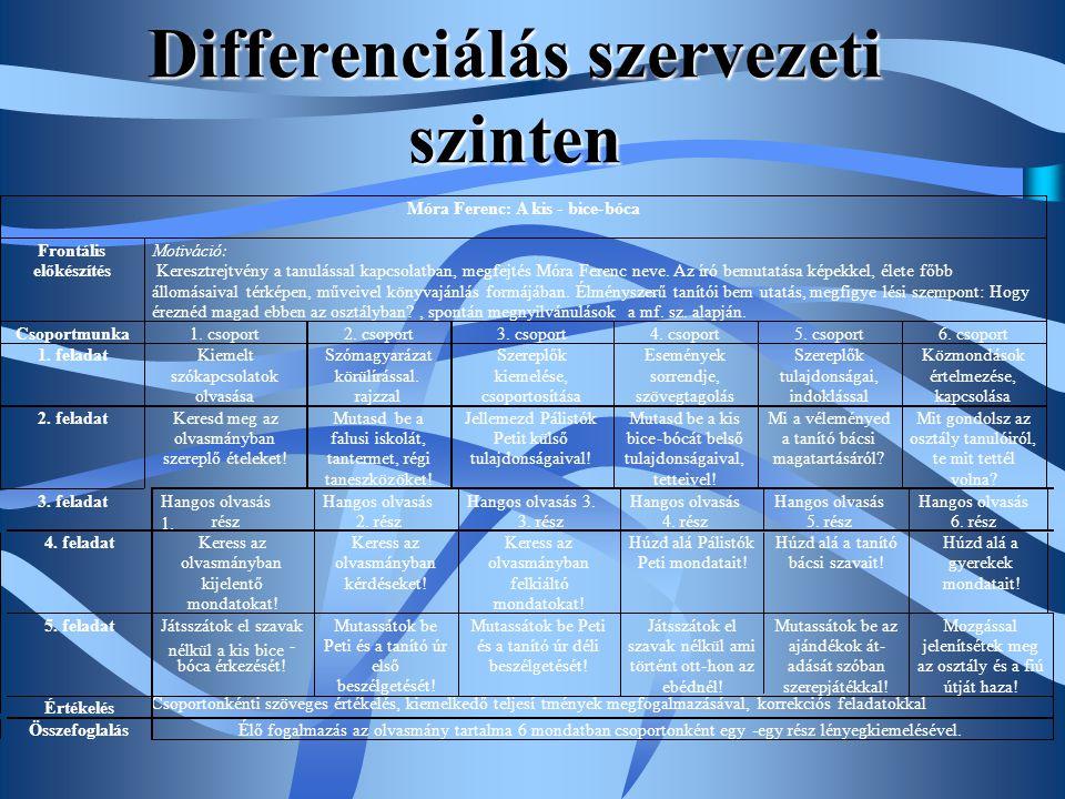 Differenciálás szervezeti szinten