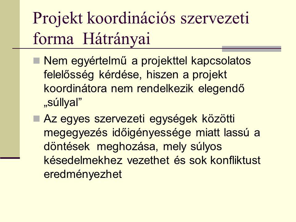 Projekt koordinációs szervezeti forma Hátrányai