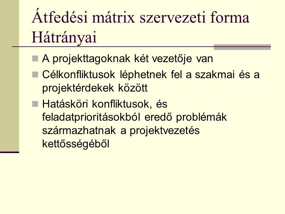 Átfedési mátrix szervezeti forma Hátrányai