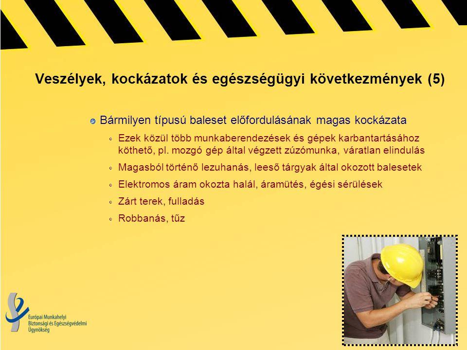 Veszélyek, kockázatok és egészségügyi következmények (5)
