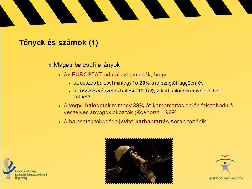 Tények és számok (1) Magas baleseti arányok
