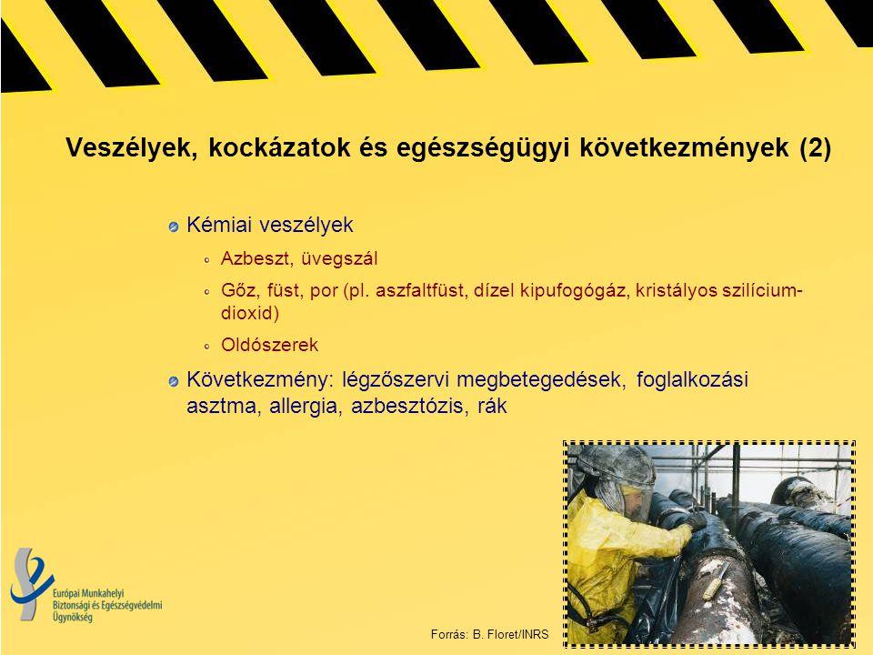 Veszélyek, kockázatok és egészségügyi következmények (2)