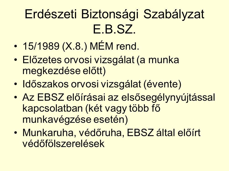 Erdészeti Biztonsági Szabályzat E.B.SZ.