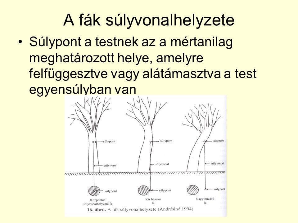 A fák súlyvonalhelyzete