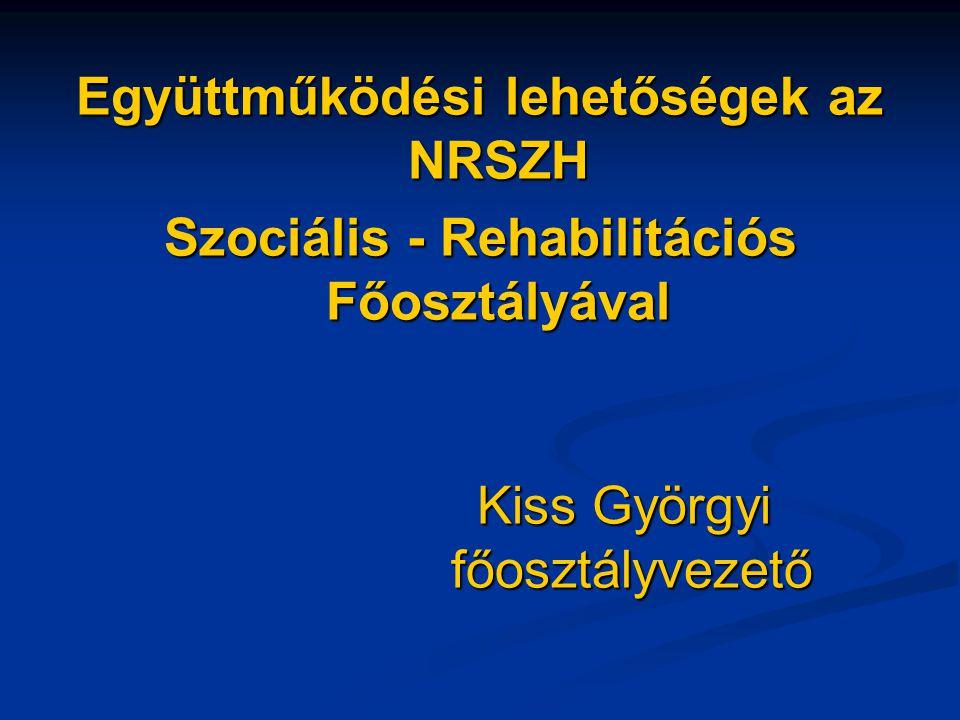 Együttműködési lehetőségek az NRSZH