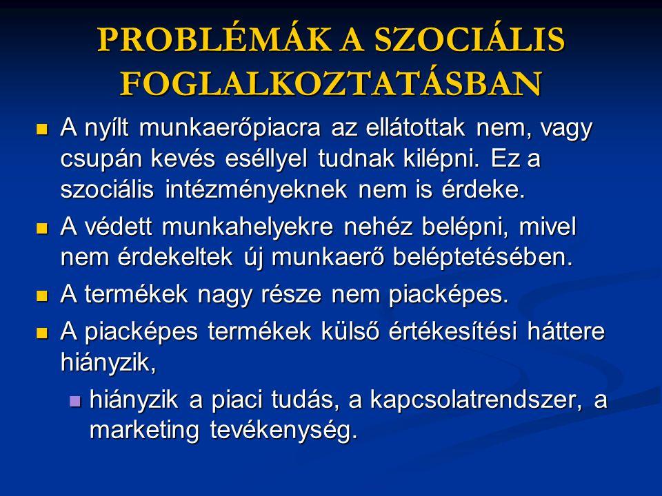 PROBLÉMÁK A SZOCIÁLIS FOGLALKOZTATÁSBAN