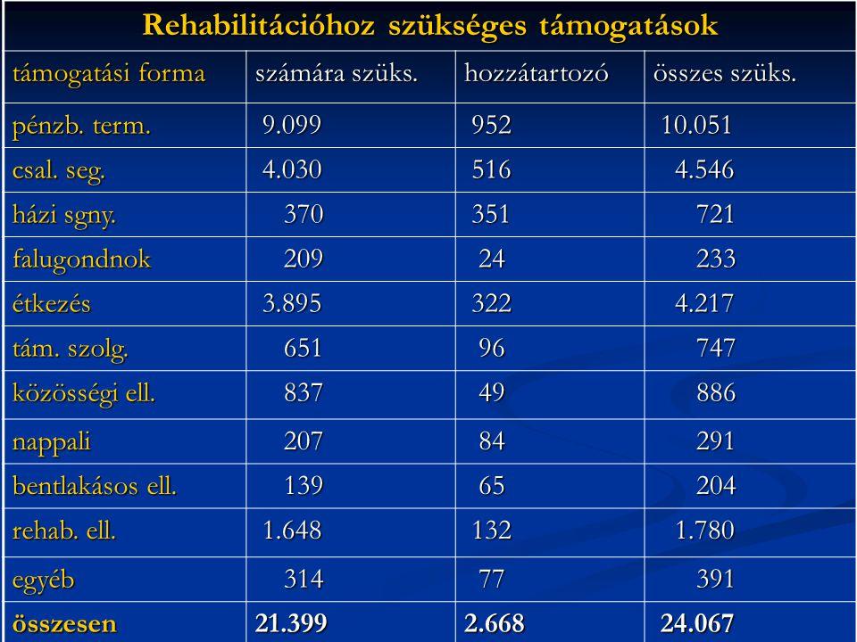 Rehabilitációhoz szükséges támogatások