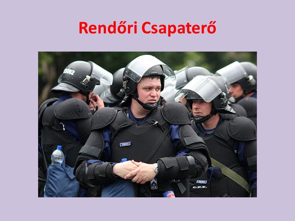 Rendőri Csapaterő