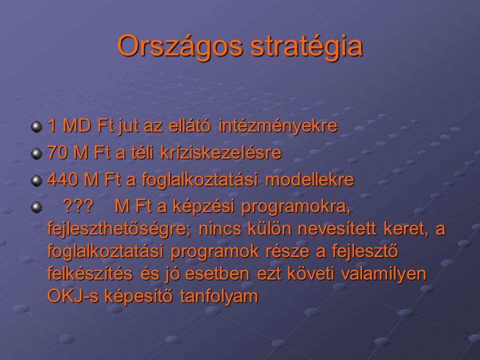 Országos stratégia 1 MD Ft jut az ellátó intézményekre