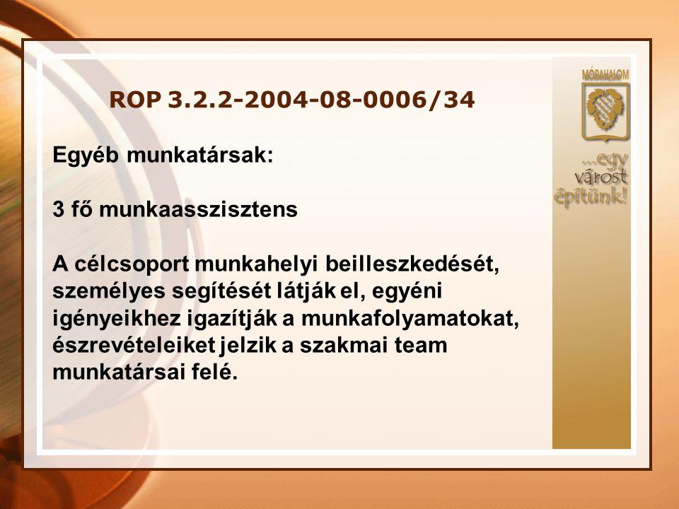 ROP 3.2.2-2004-08-0006/34 Egyéb munkatársak: 3 fő munkaasszisztens.