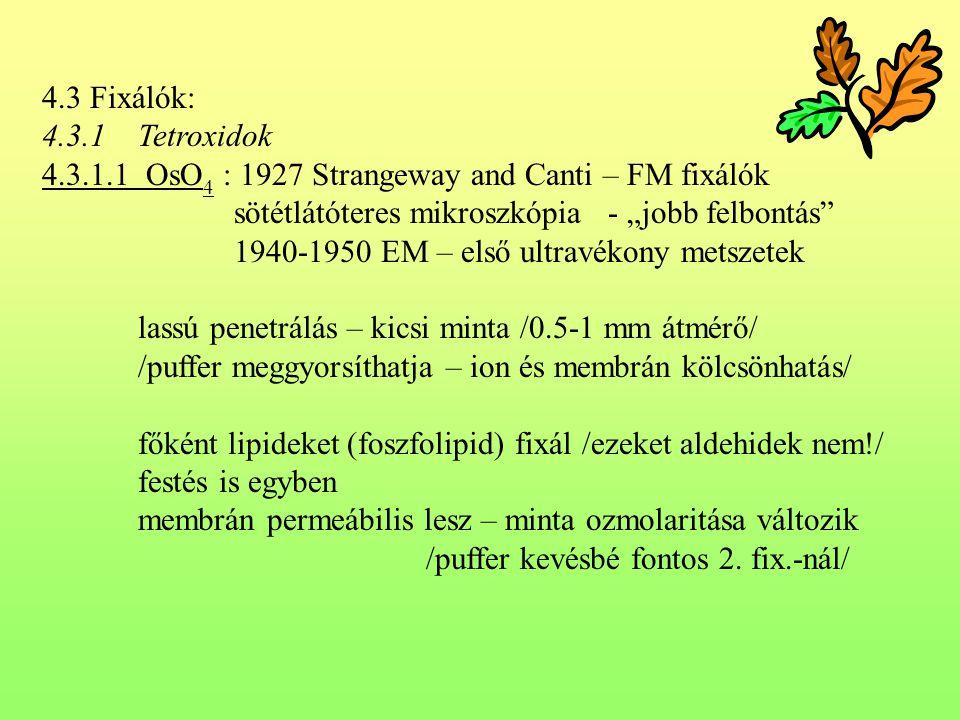 """4.3 Fixálók: 4.3.1 Tetroxidok. 4.3.1.1 OsO4 : 1927 Strangeway and Canti – FM fixálók. sötétlátóteres mikroszkópia - """"jobb felbontás"""