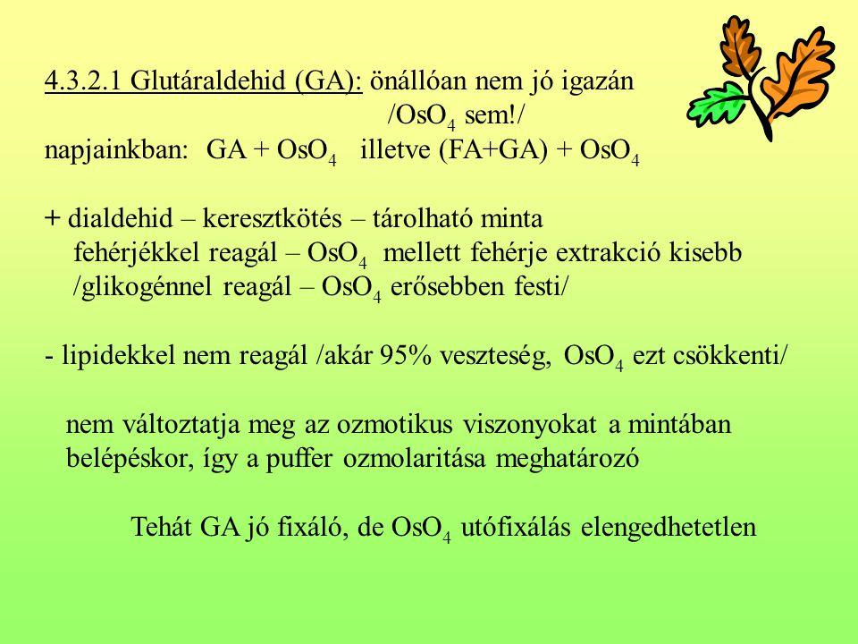 4.3.2.1 Glutáraldehid (GA): önállóan nem jó igazán