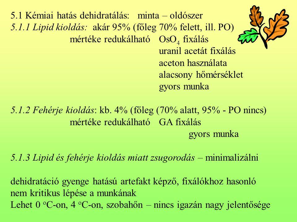 5.1 Kémiai hatás dehidratálás: minta – oldószer