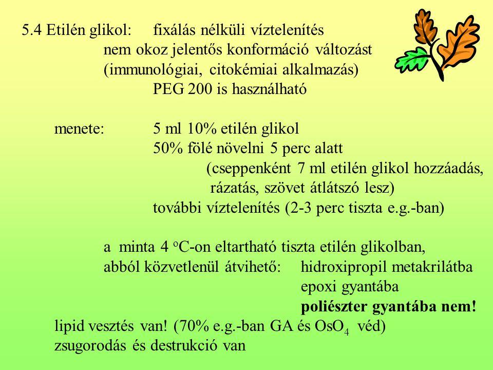 5.4 Etilén glikol: fixálás nélküli víztelenítés
