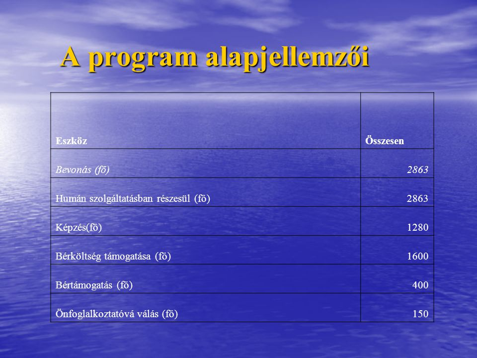 A program alapjellemzői
