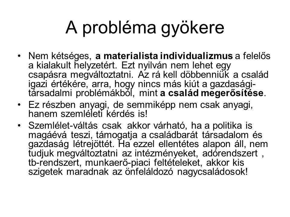 A probléma gyökere