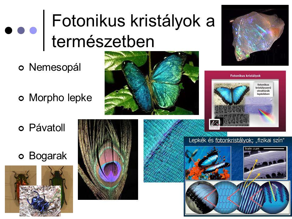 Fotonikus kristályok a természetben