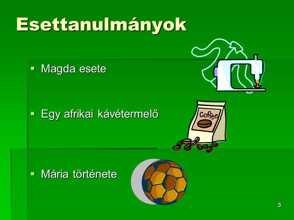 Esettanulmányok Magda esete Egy afrikai kávétermelő Mária története