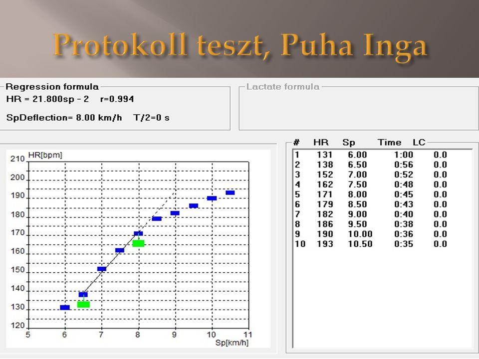 Protokoll teszt, Puha Inga