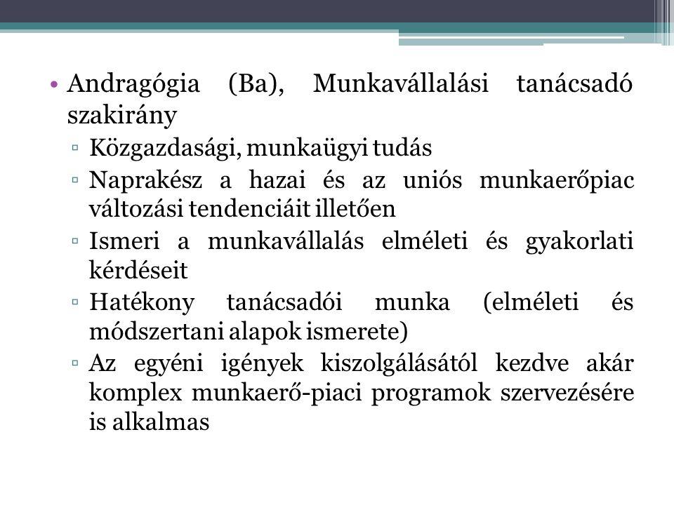 Andragógia (Ba), Munkavállalási tanácsadó szakirány