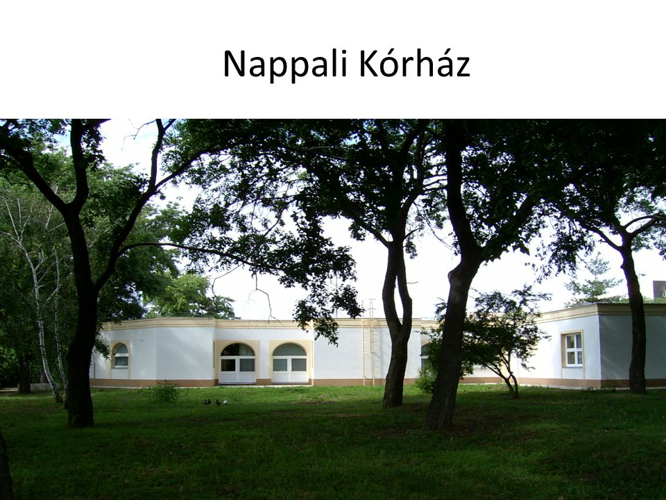 Nappali Kórház