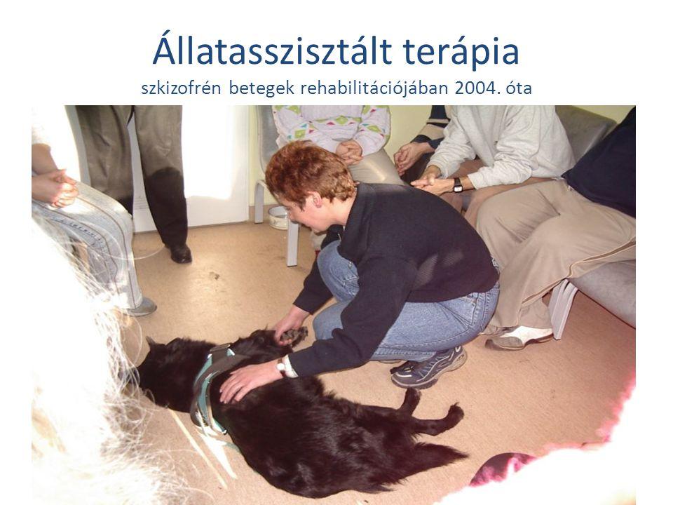Állatasszisztált terápia szkizofrén betegek rehabilitációjában 2004