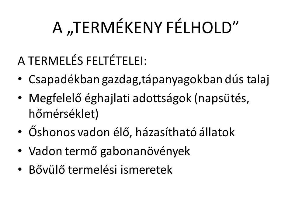 """A """"TERMÉKENY FÉLHOLD A TERMELÉS FELTÉTELEI:"""