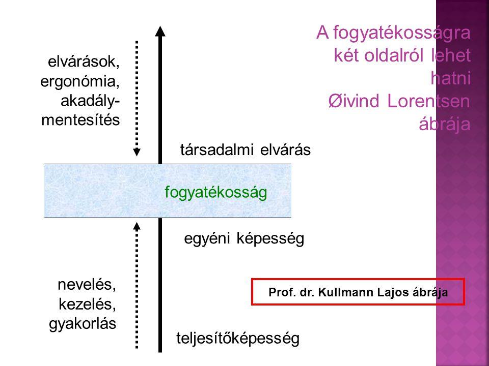 Prof. dr. Kullmann Lajos ábrája