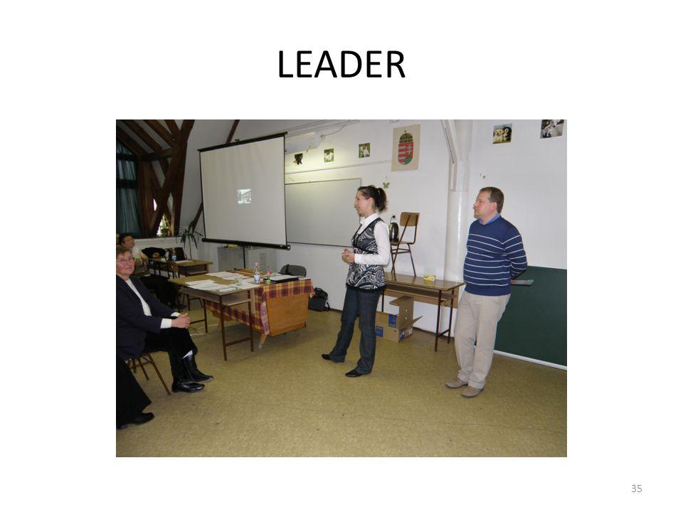 LEADER HVS felülvizsgálat