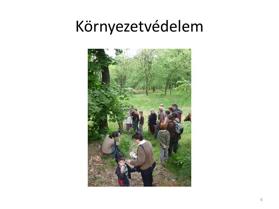 Környezetvédelem Civil szervezetek tevékenységei: madarak, fák napja