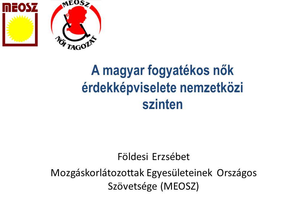 A magyar fogyatékos nők érdekképviselete nemzetközi szinten