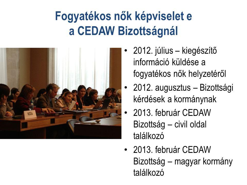 Fogyatékos nők képviselet e a CEDAW Bizottságnál