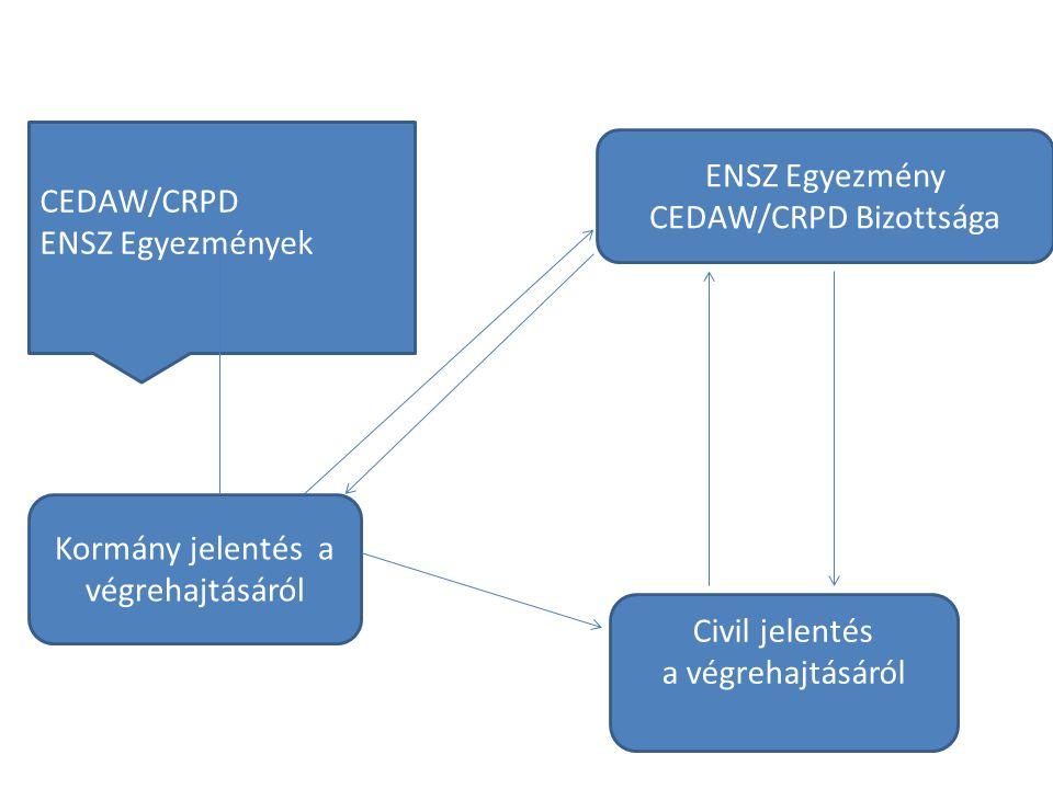 CEDAW/CRPD Bizottsága