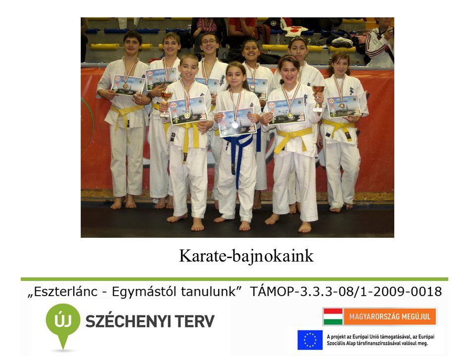 Karate-bajnokaink