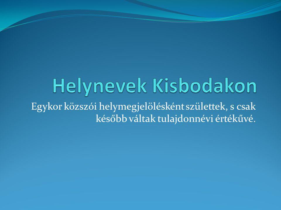 Helynevek Kisbodakon Egykor közszói helymegjelölésként születtek, s csak később váltak tulajdonnévi értékűvé.