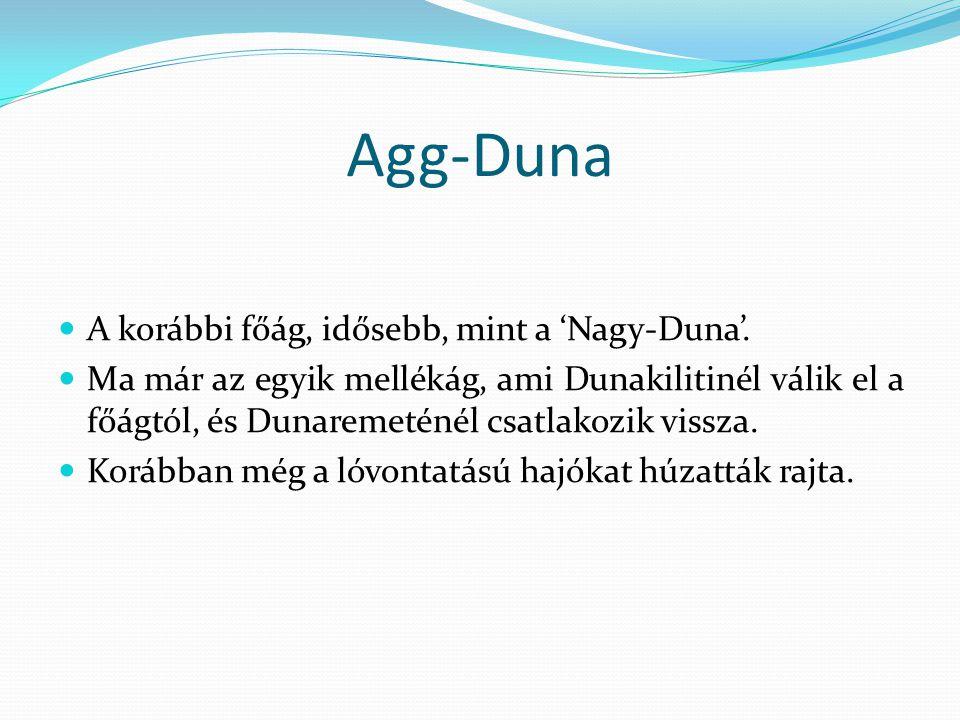 Agg-Duna A korábbi főág, idősebb, mint a 'Nagy-Duna'.