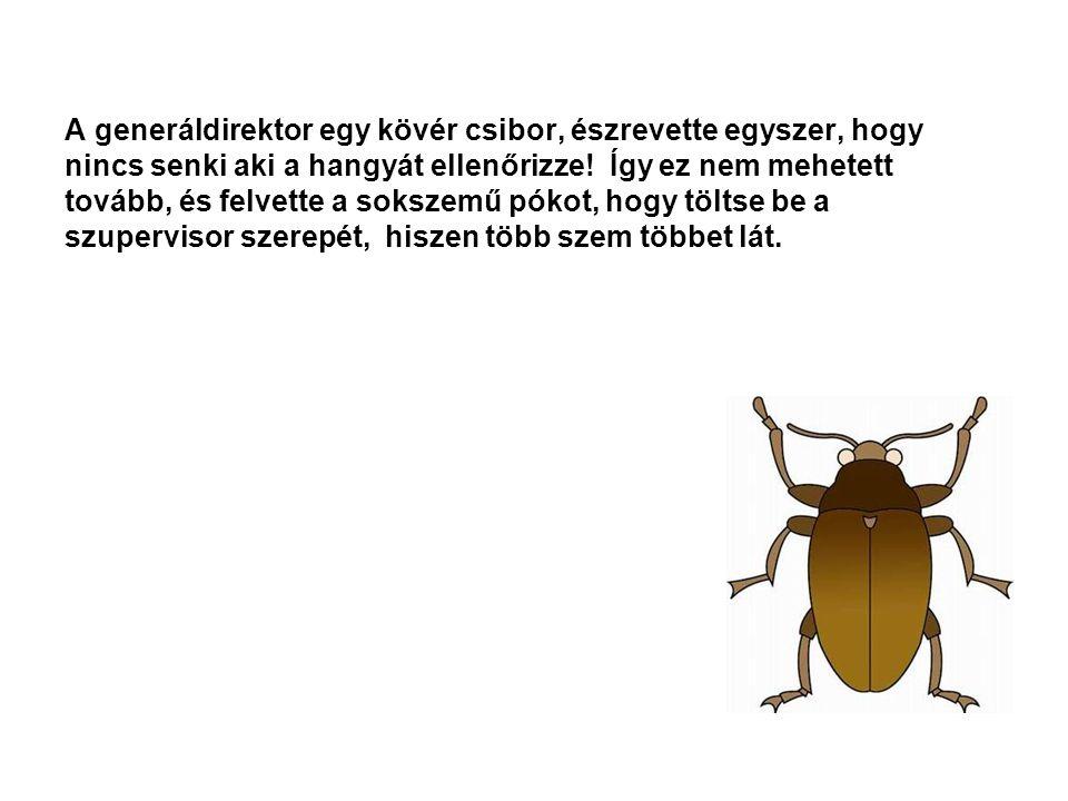 A generáldirektor egy kövér csibor, észrevette egyszer, hogy nincs senki aki a hangyát ellenőrizze.