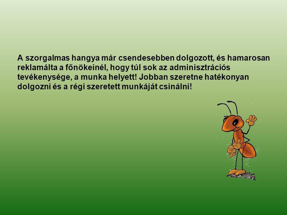 A szorgalmas hangya már csendesebben dolgozott, és hamarosan reklamálta a főnökeinél, hogy túl sok az adminisztrációs tevékenysége, a munka helyett.
